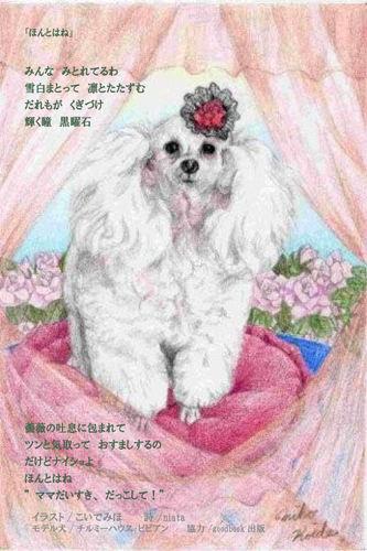 盲導犬募金ポストカード